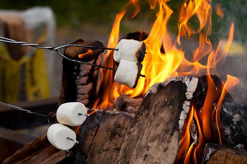 camp fire smores.jpg