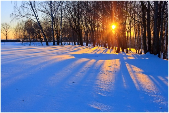 Snow adventure.jpg