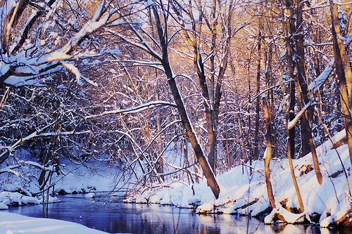 snow river.jpg