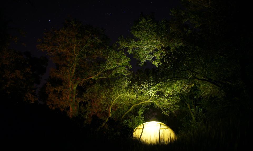 night tent camping.jpg