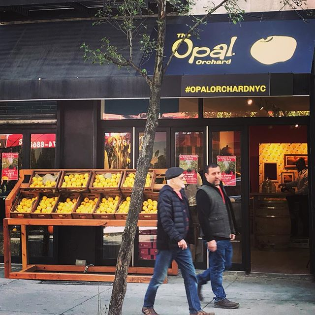 The Opal Apple popup is open in NYC's Lower East Side all weekend! @opal_apple #deptzero #popupactivation #nyc #popupnyc #opalapples #appleseason #applemonth #welovefall #brandactivation #eventproduction #experientialmarketing #sampling #eventmarketing