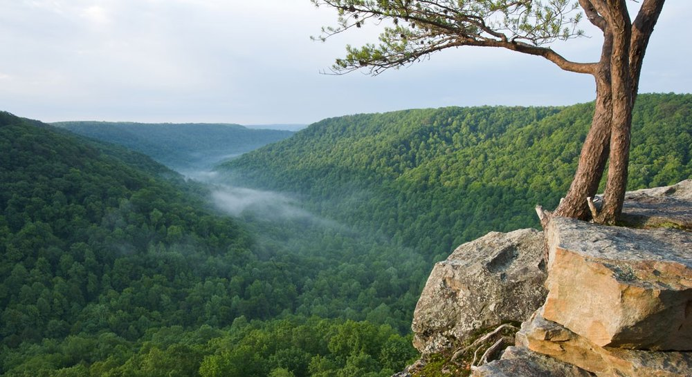 Cumberland-Plateau-overlook-header.jpg