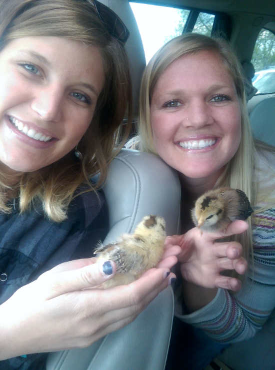 Schannon and Jessie the day we got the chicks. Only 5 days old!