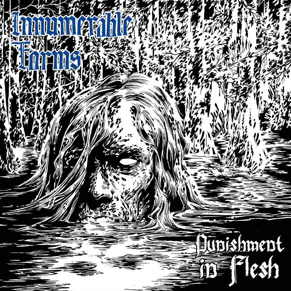 Innumerable Form - Punishment in Flesh