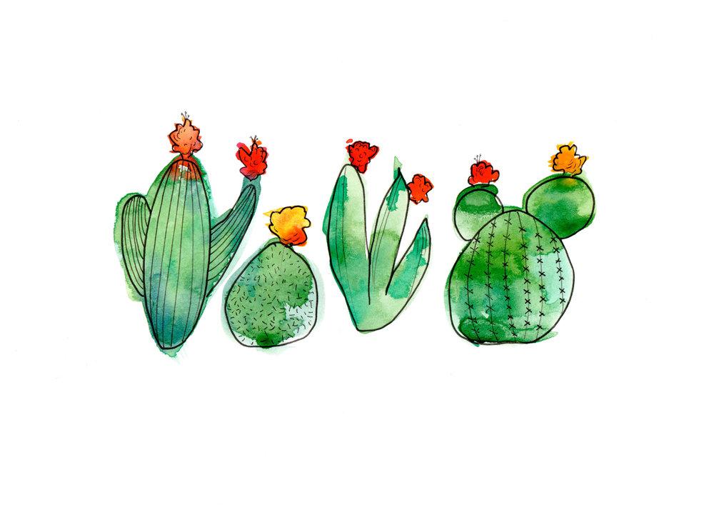 CactusClub.jpg
