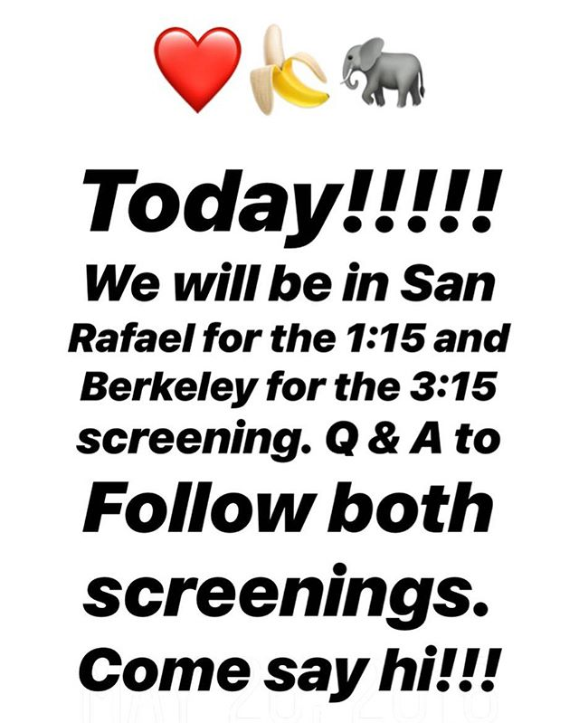 Happy Memorial Day!! Join us in San Rafael for the 1:15pm show and in Berkeley at the Rialto Elmwood for the 3:15pm show. Q and A with @ashleymichaelbell @lek_chailert @changeforbalance and a VERY SPECIAL guest to follow both screenings!! #TeamBanana ❤️🍌🐘