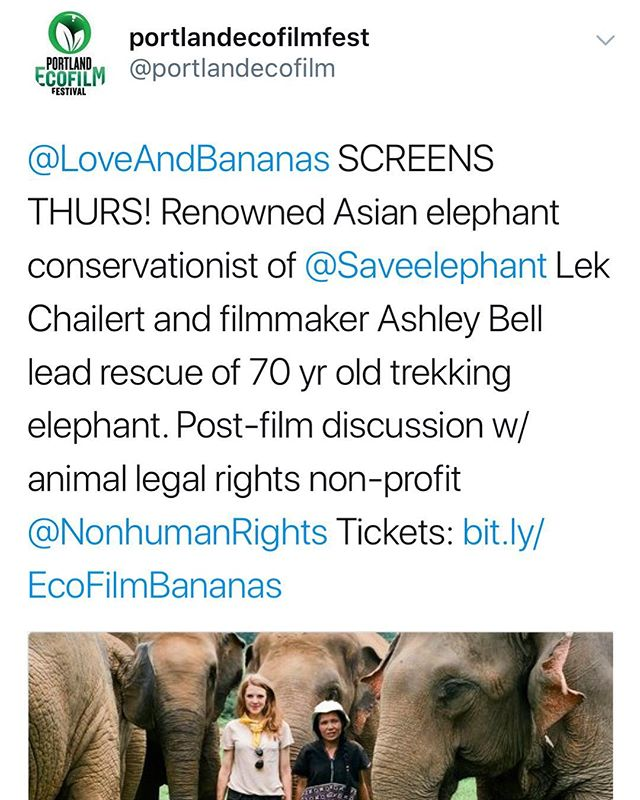 Portland let's do this! We are honored to be a part of the @portlandecofilmfest screening this Thursday! Post film discussion with @nonhuman.rights.project #TeamBanana #SaveElephants ❤️🍌🐘