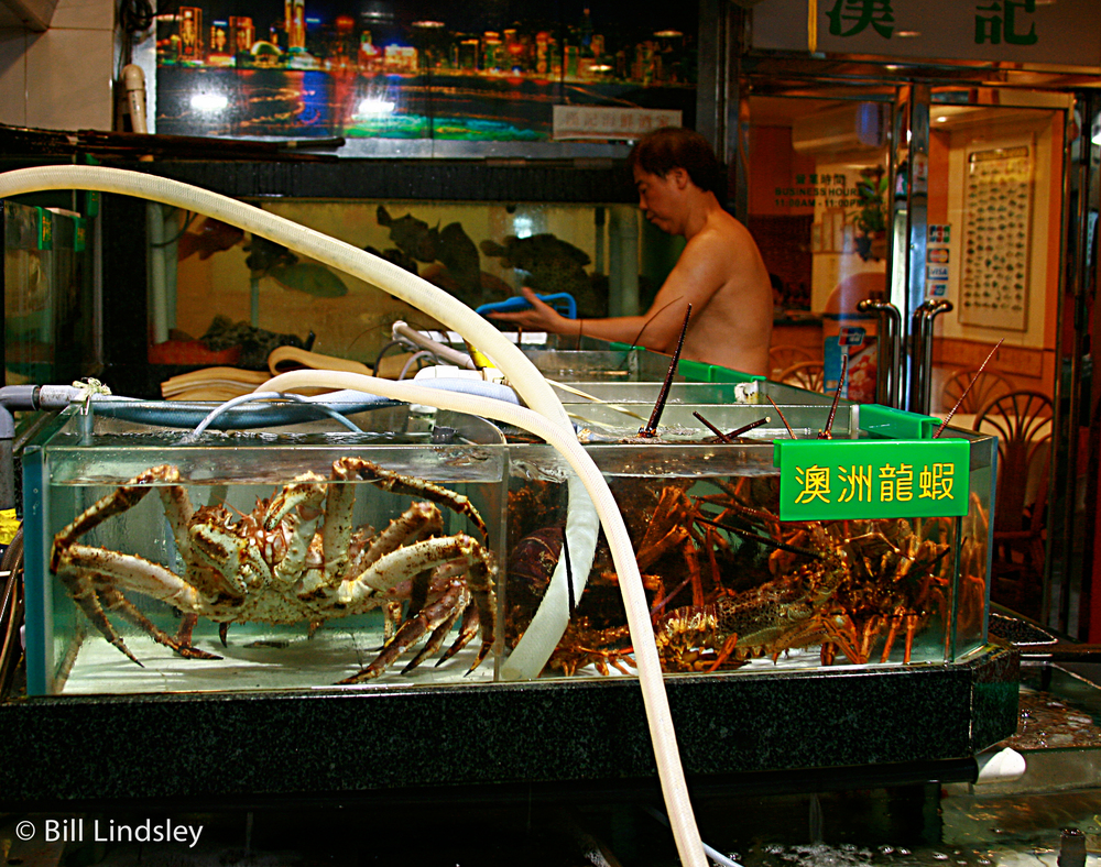 Fish Market, Hong Kong, China