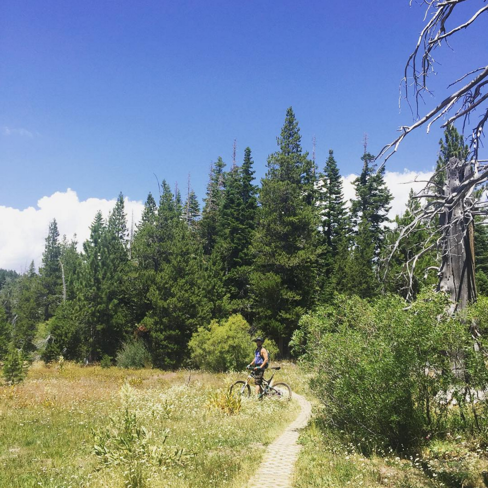Mountain biking in Page Meadows