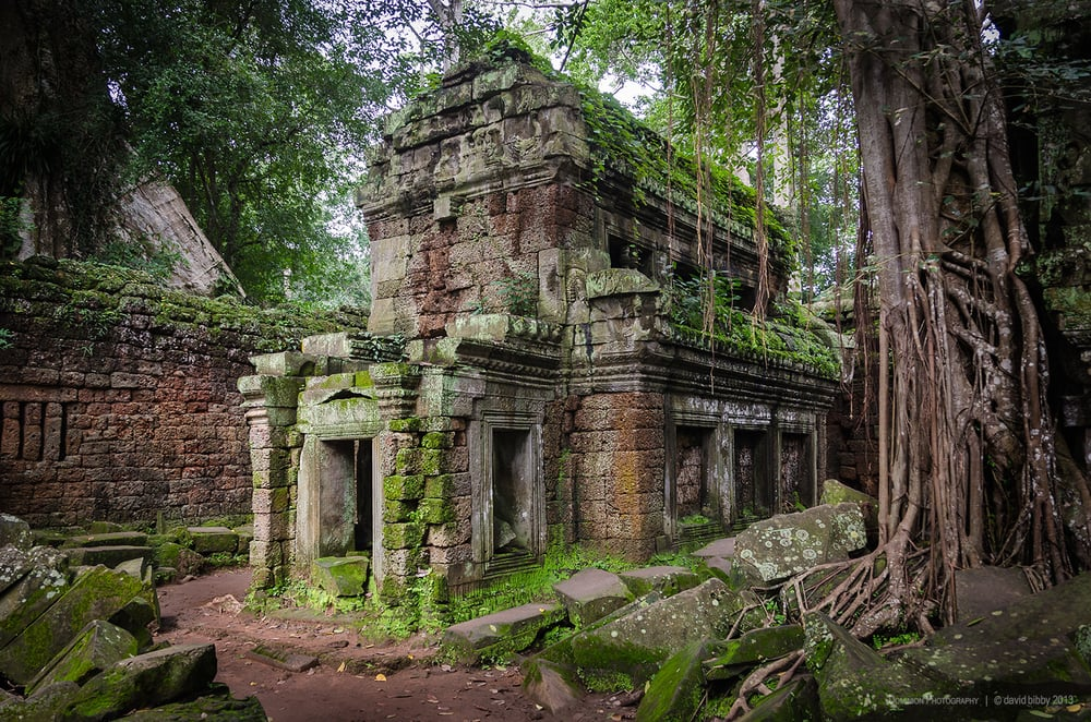 Ta Prohm  - In the ruins. The Ta Prohm temple complex was built in the 12th-13th centuries. Siem Reap Province, Cambodia.