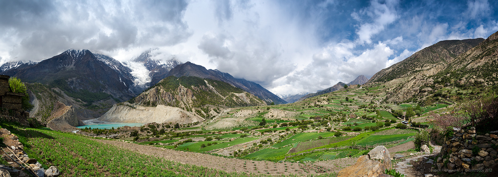 Cultivated fields on the western side of the village of Manang (3540m). The mountain peak to the right of the glacier is Ganggapurna (7454m). Annapurna Conservation Area.