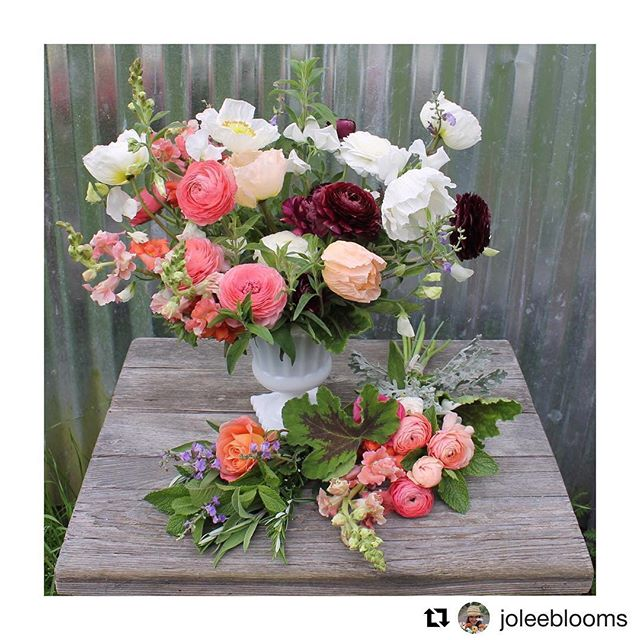 It's Farm Trails weekend! Swing by 11am-3pm TODAY to meet two local farmers & get your cheese on 💐🌱🌺 ・・・ We're participating in @sonomacountyfarmtrails from 11am-3pm today. Join us along with @pianofarm for a Saturday full of amazing cheese, herb salts and fresh flowers! In the flower department, we've got posies, ranunculus bunches and herb bundles 😍💛😍