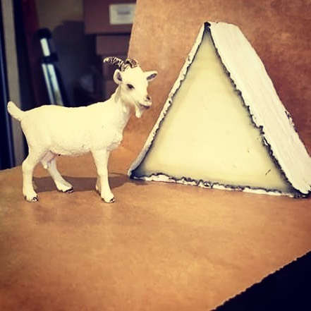 A little inspiration to help you get thru Monday morning 🧀🐐 #youcandoit #climbthatmountain . . #goatcheese #cypressgrove #cheeseshophumor #cheeese #cypressgrove