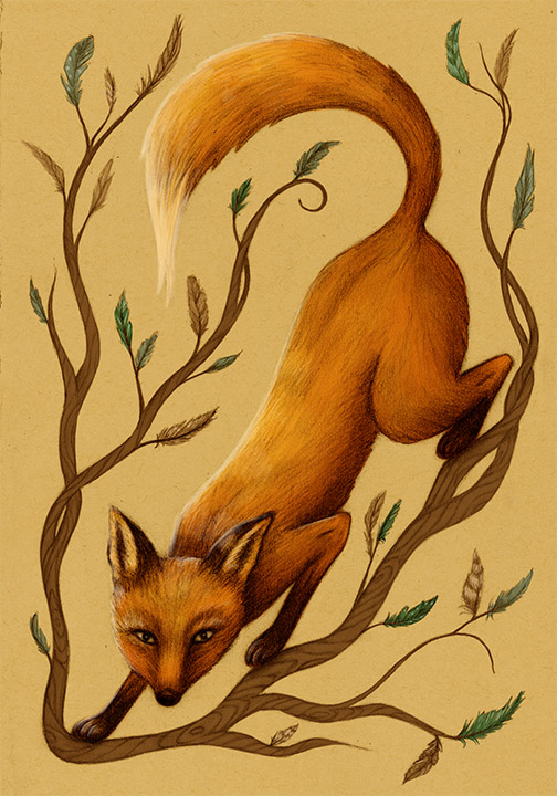 SarahDC-Fox&Feathers.jpg