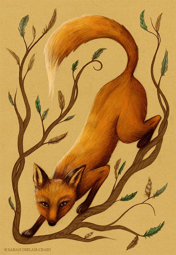 SarahDC-Fox&Feathers-2013.jpg