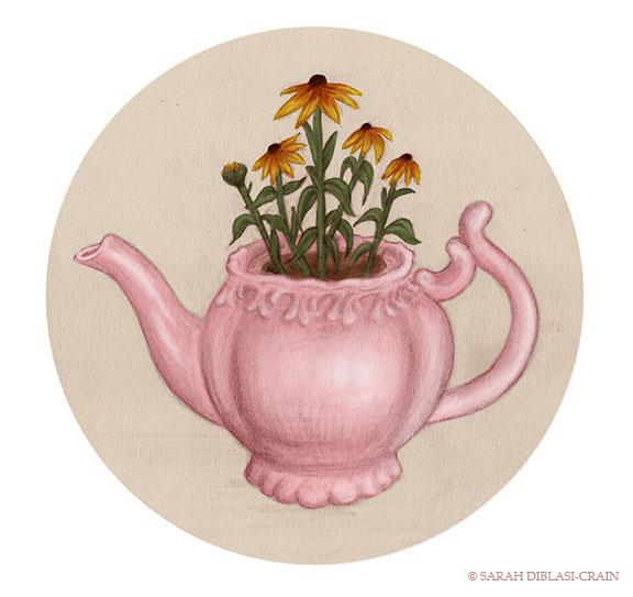 Teapot Plant