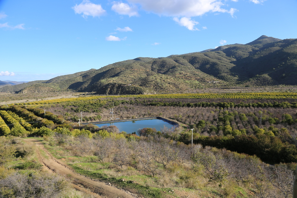 GGC water reservoir among the lemon fields.
