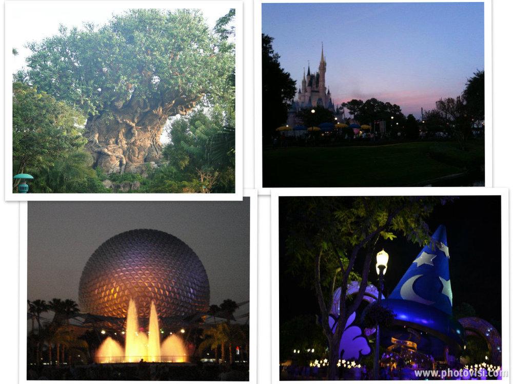 Collage 4 Parks.jpg