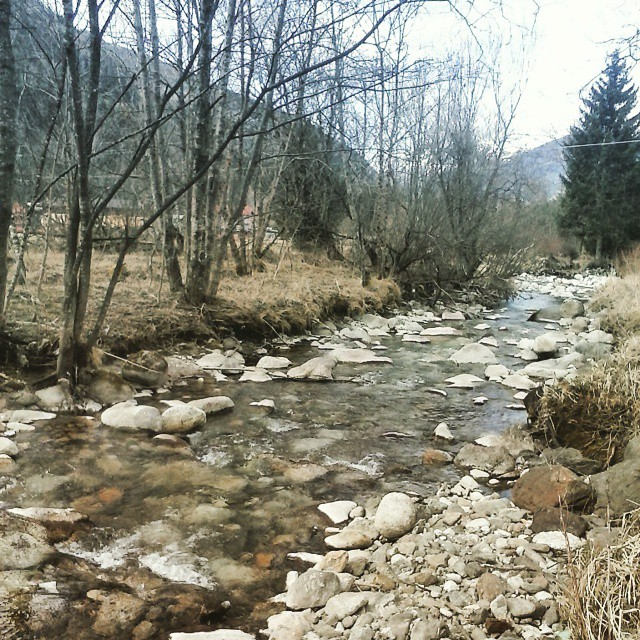 #vallecamonica #MTB #guado #pirla #acquanellescarpe #torrente #shoesoaker #dumbo #fun #cycling