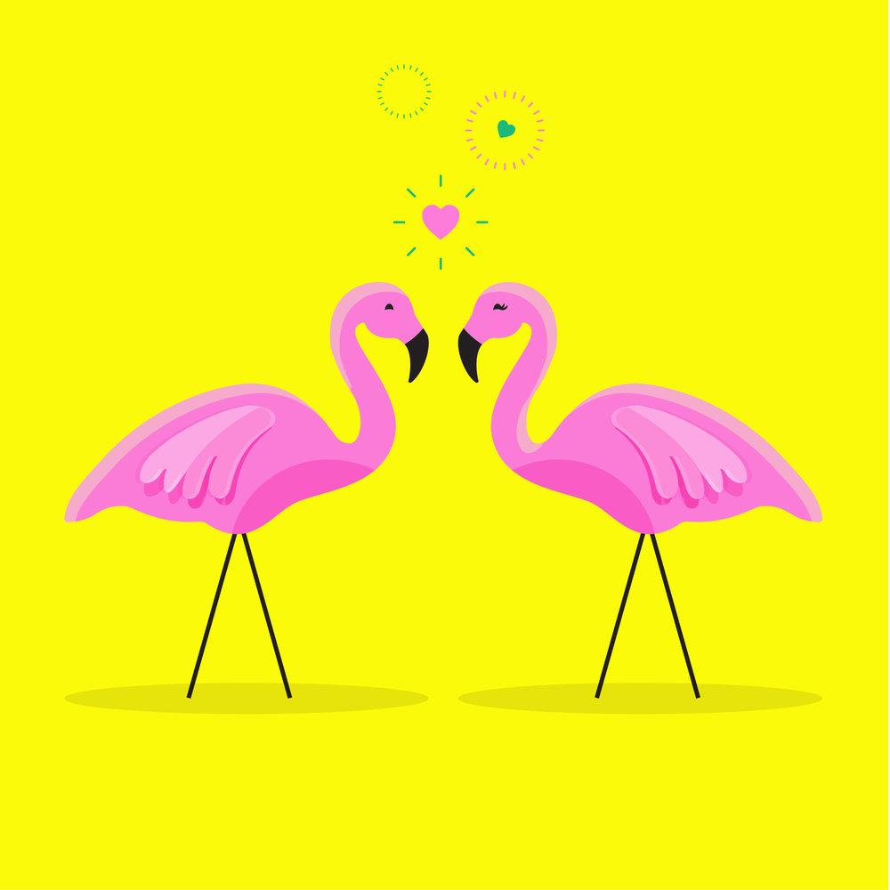 IQ_Flamingos_HaleyFischer-01.jpg