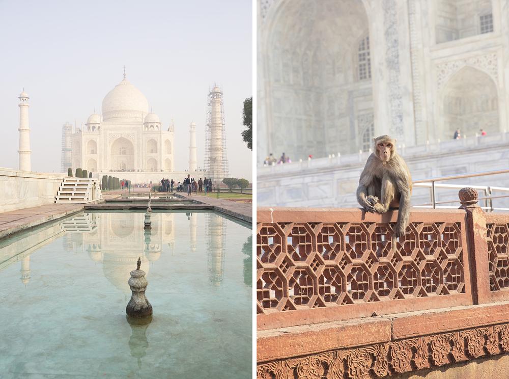 India27.jpg