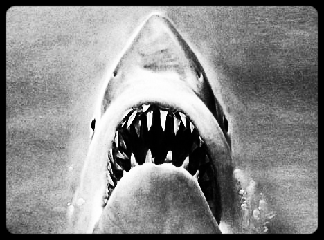 Project: Jaws    artists involved: 2