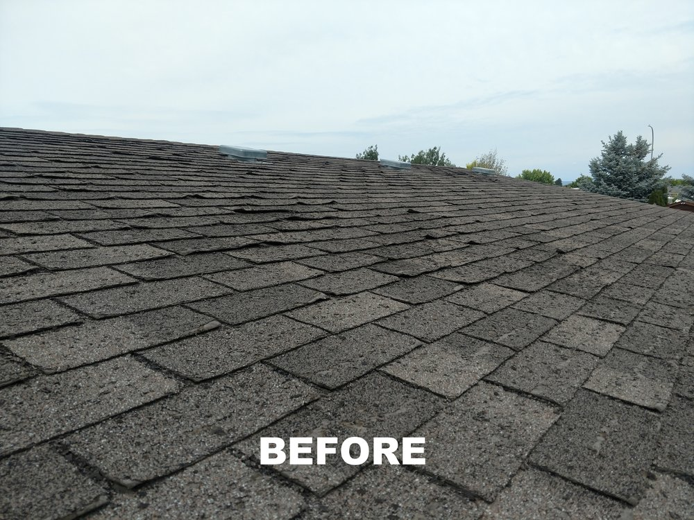 Roof before.jpg