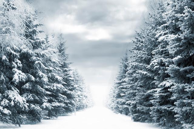 Midvinterglöd – En oförglömlig vinterkväll   15 December 2012 kl 12-20 hos Skulls & Bones i Jättendal, Hälsingland