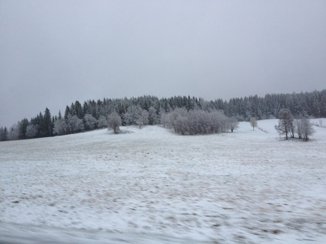 Det blev helt plötsligt vinter!