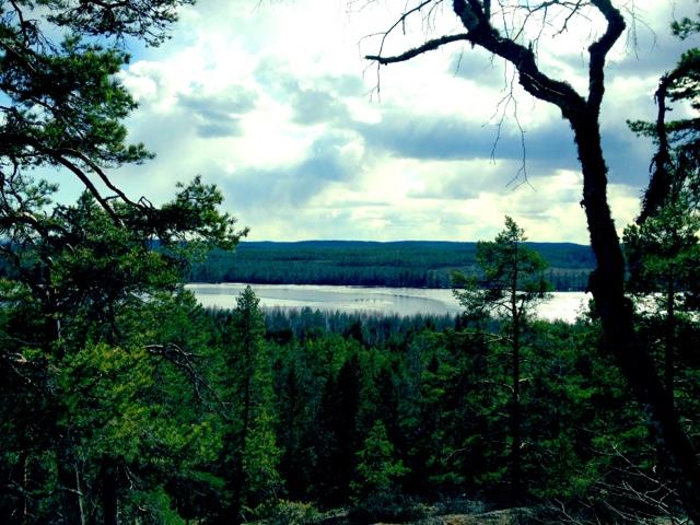 Vettberget i Jättendal