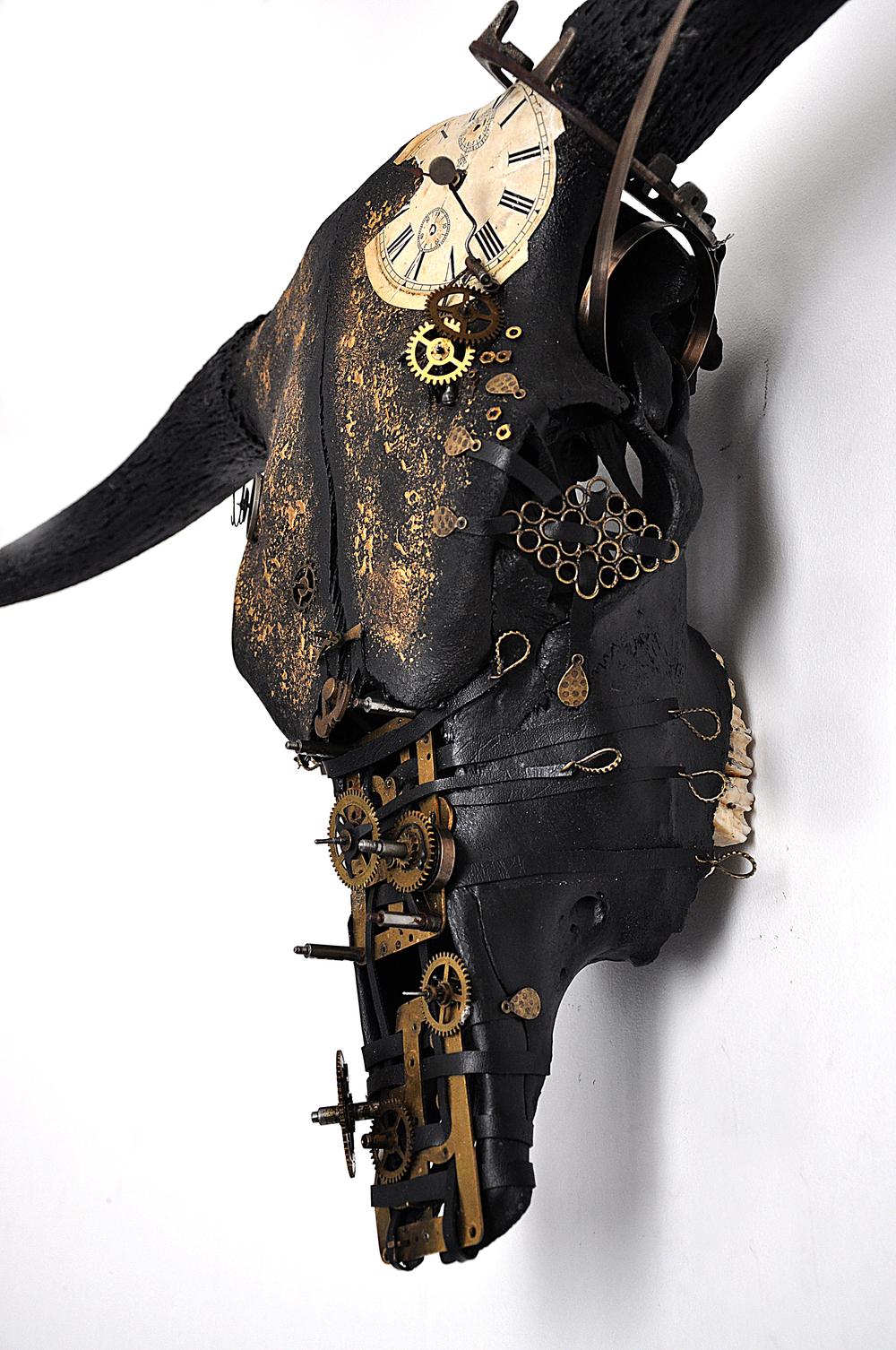 petra-shara-stoor-skull-art-kronhan-3.JPG