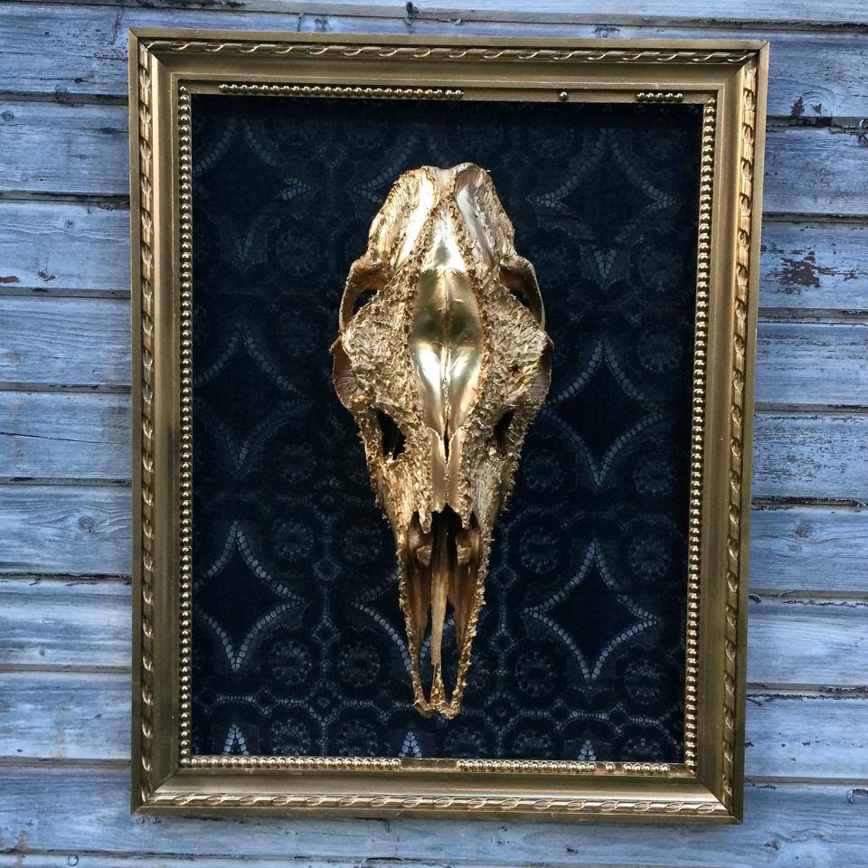 petra-shara-stoor-skull-art-vahuan-1.jpg
