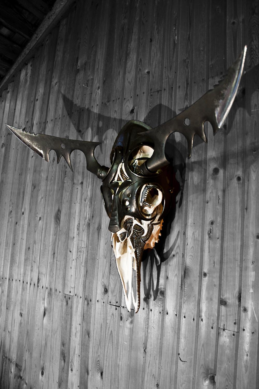 petra-shara-stoor-skull-art-galwan-3.png