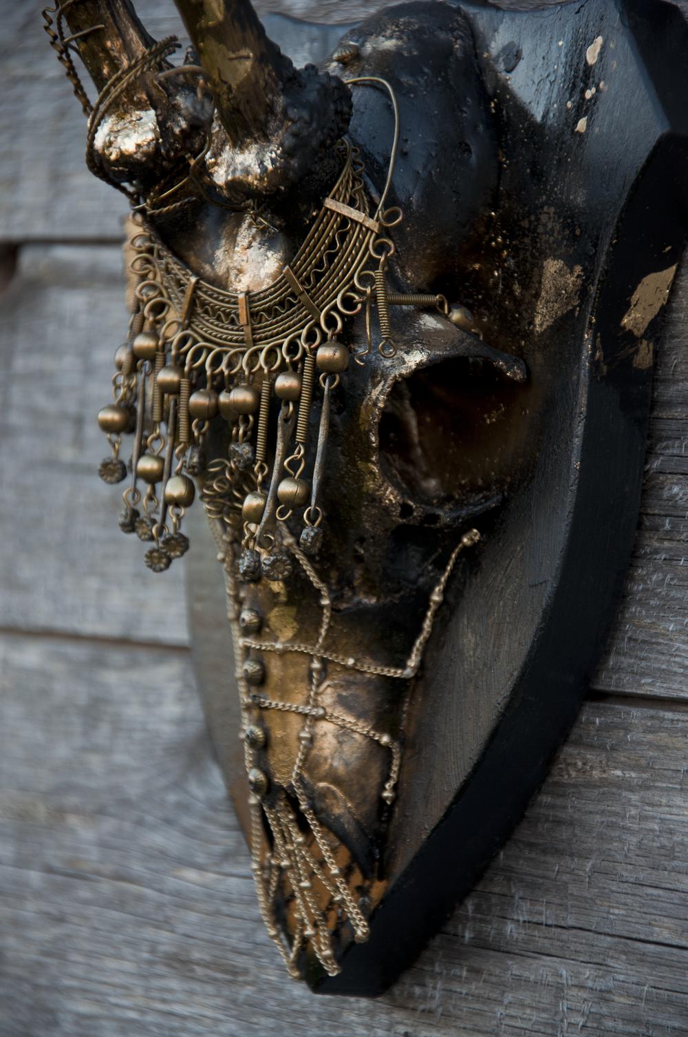petra-shara-stoor-skull-art-myxh-1.png