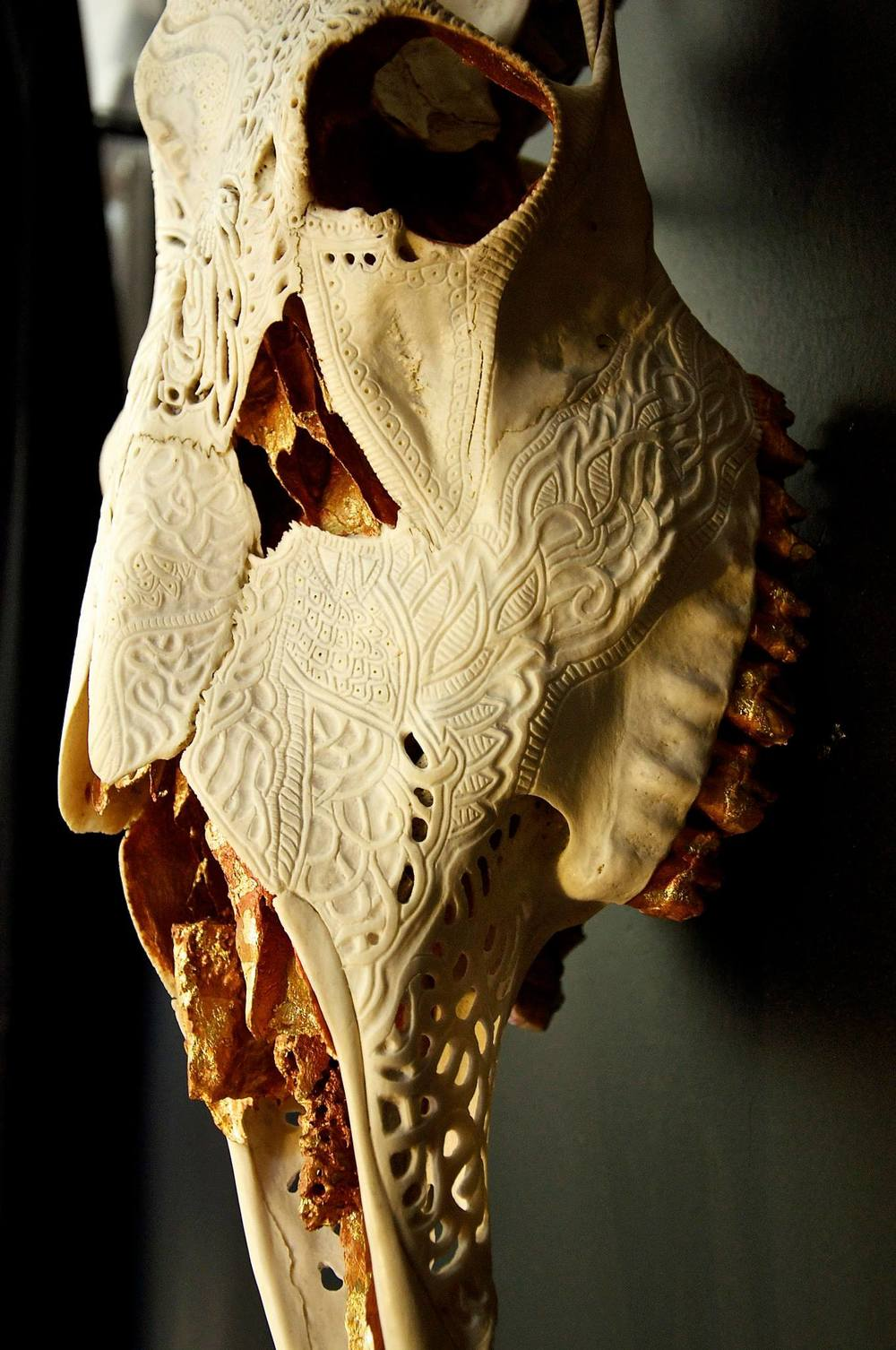 petra-shara-stoor-skull-art-duilith-2.jpg