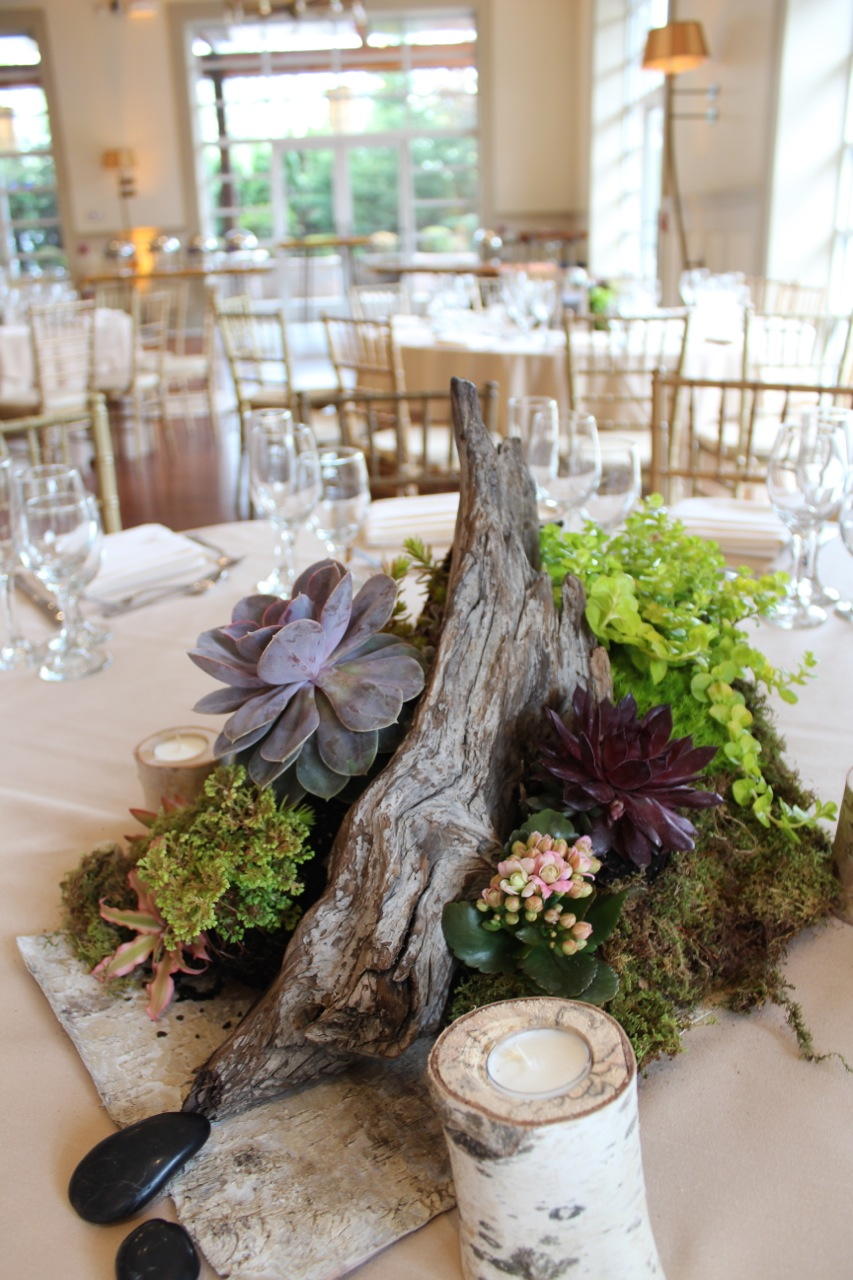 Succulent wedding decor at the stone house at stirling for Jardin decor 37