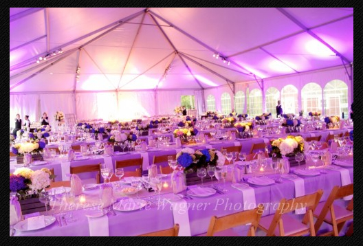 Lavender uplighting creates a soft glow, even during daylight hours.