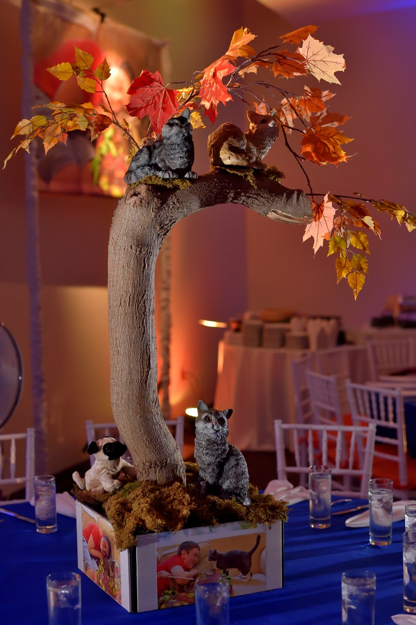 """Cats are the mitzvah boy's favorite animals, so we created a playful """"cats in a tree"""" centerpiece"""