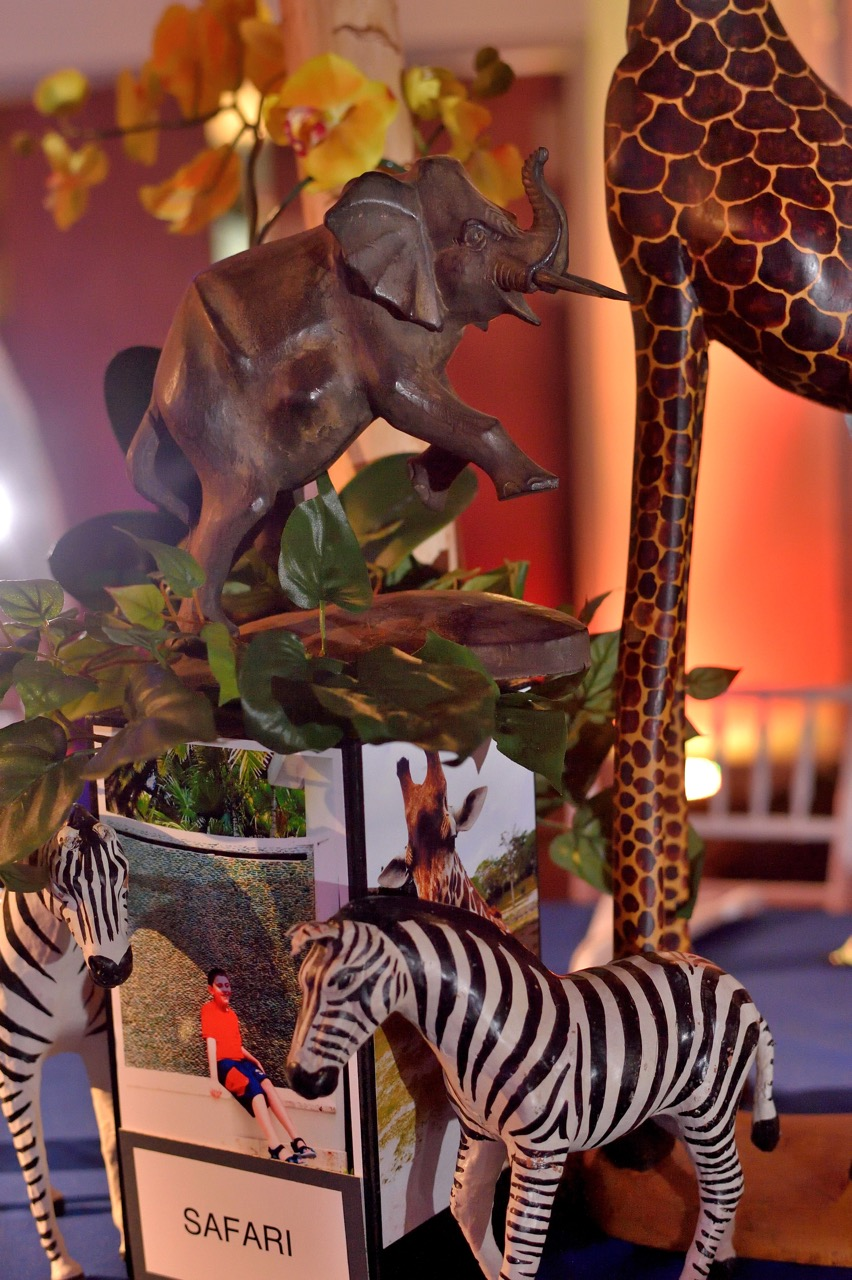 Details of our gorgeous animal figurines