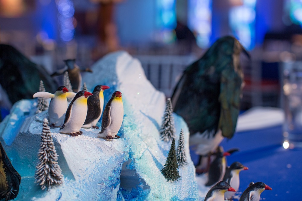 Details of our penguin centerpiece