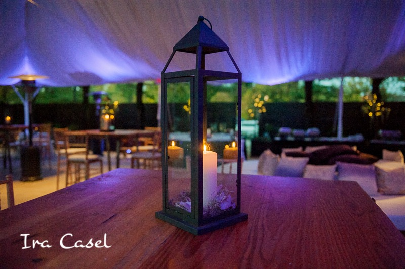 Eggsotic Events NJ NYC Event Design Luxury Bat Mitzvah Stone House at Stirling Ridge Warren NJ Gemstones Birch Organic Art Nature Theme Decor and Lighting 07.jpg
