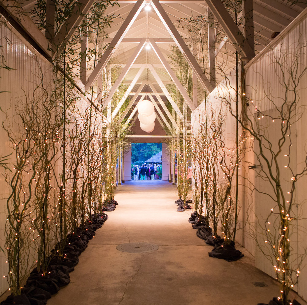 Our branches transformed a non-descript hallway into an intimate path.