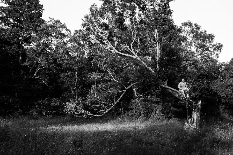 My partner, painter Martin Swift in a lighting-struck tree in Titusville, PA.