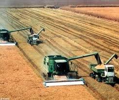 farming images.jpg