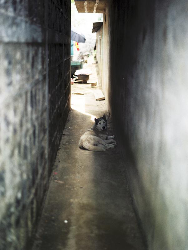 Guate-005.jpg