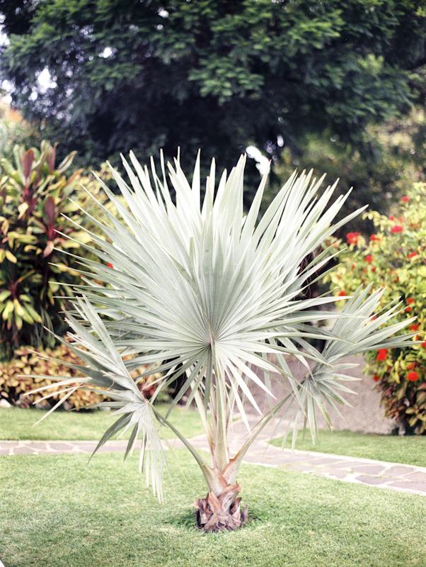 Guate-12.jpg