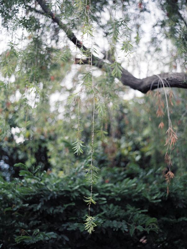 Guate-030.jpg