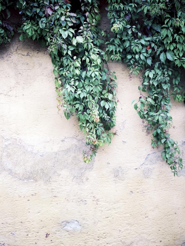 Guate-052.jpg
