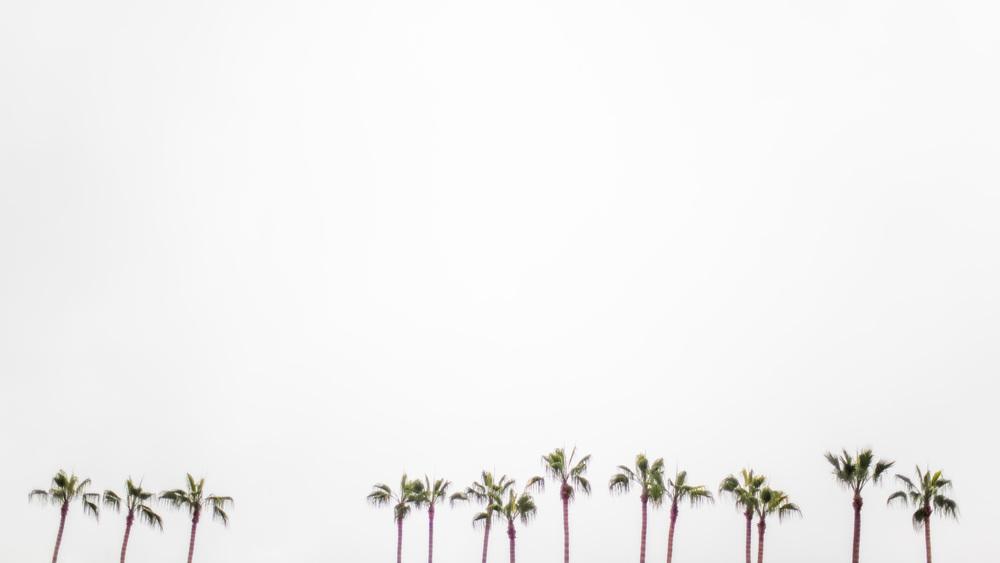 San Diego Landscape & Portrait Photographer