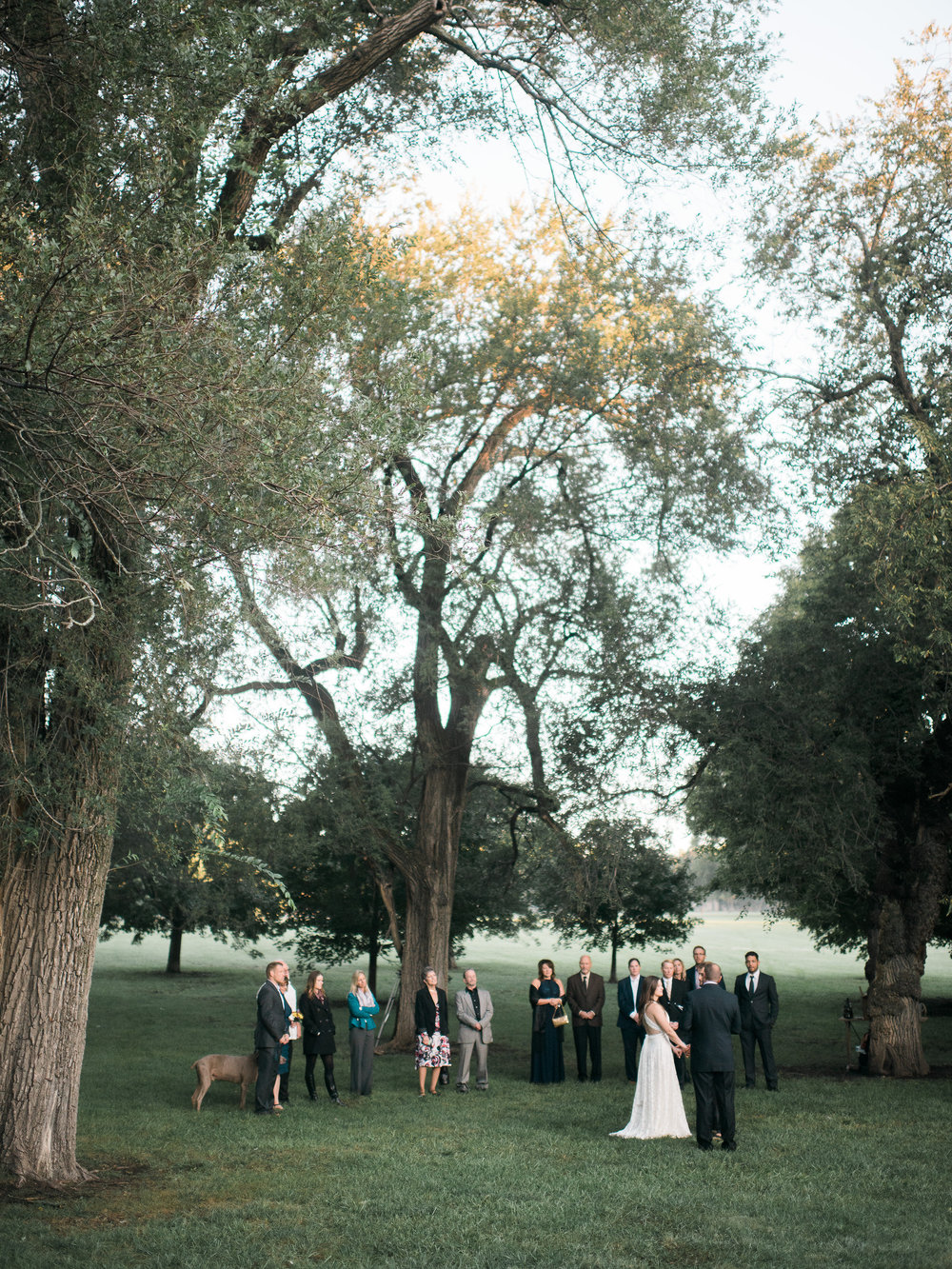 Loose Park Wedding Ceremony Elopement Photographer